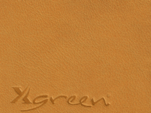 XGREEN 27510 Tiger Lilli